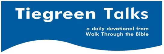 Tiegreen talks banner
